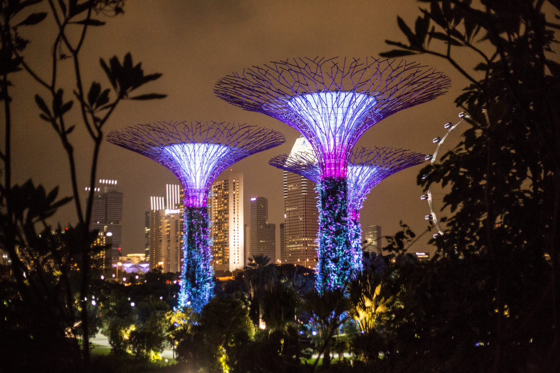 Scott Bass - Travel and Parkour in Singapore 32